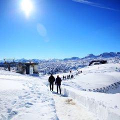 Dachstein山上的冰洞用戶圖片
