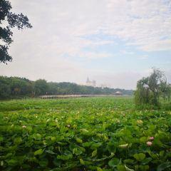 Lianhu Park User Photo