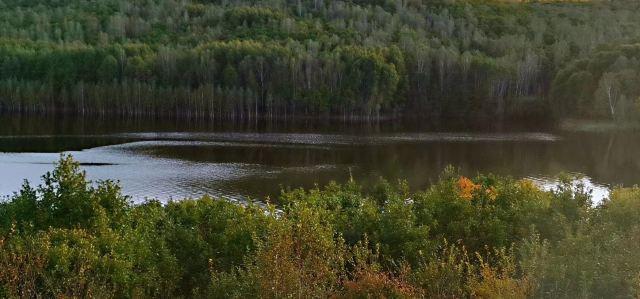 六峰湖自然保護區