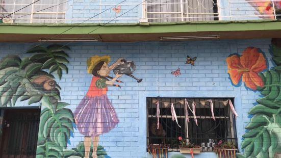 Valparaiso, Chile。美麗的港口城市,牆上畫滿