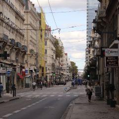 里昂市政府用戶圖片