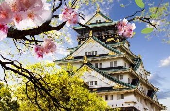 大阪で人気の美しい庭園