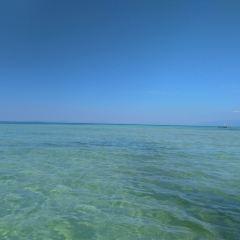 Starfish Beach User Photo
