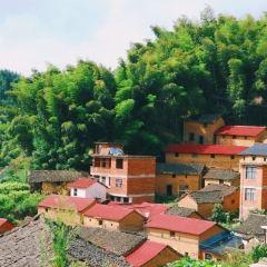 홍촌 여행 사진