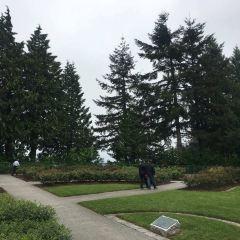 Pacific Spirit Regional Park User Photo