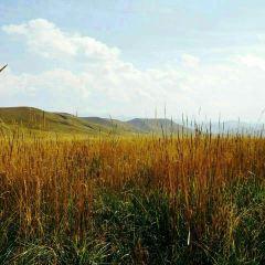 紅石崖用戶圖片