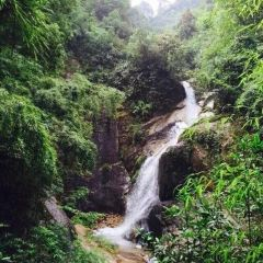 Jiuzhong Mountain National Forest Park User Photo