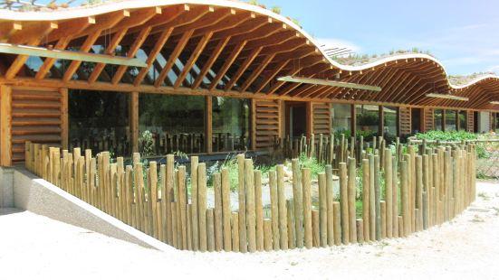 昆蟲與自然文化中心