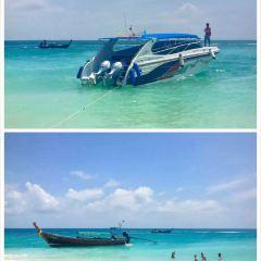 蘭迪沙灘用戶圖片