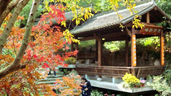 龍井山園茶文化村