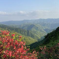 Yangmingshan National Forest Park User Photo