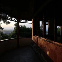 鳳凰山用戶圖片