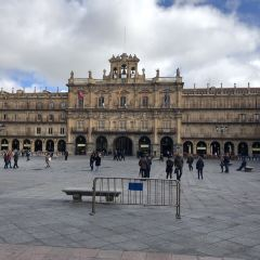 Plaza Mayor User Photo