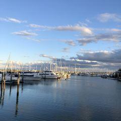 Great Sandy Straits Marina用戶圖片