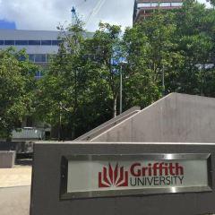 Griffith University Art Gallery User Photo