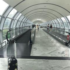 Jewel Changi Airport User Photo