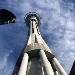天空塔用戶圖片