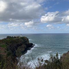 Kilauea Lighthouse User Photo
