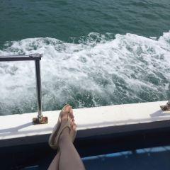汀娜灣用戶圖片