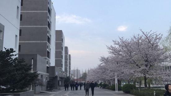 난징 삼림 경찰대학