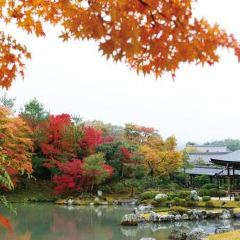 Zuihoji Park User Photo