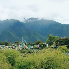 熱振國家森林公園用戶圖片