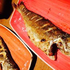Pesca用戶圖片