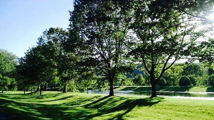 Otsiningo Park
