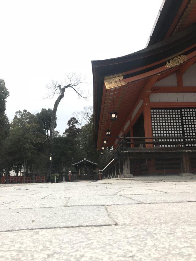금강사 (야사카 경신당)