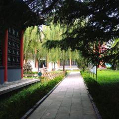 Yinqueshan Han Bamboo Slips Museum User Photo