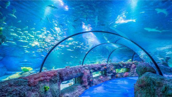 瀋陽海洋探索中心