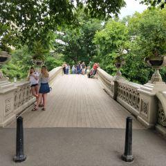Bow Bridge User Photo