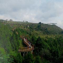 Qiping Village User Photo