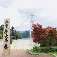 """九重""""夢""""大吊橋用戶圖片"""