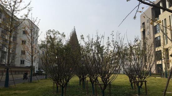 上海對外貿易學院-圖書館(古北校區)