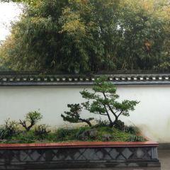 野芳園用戶圖片