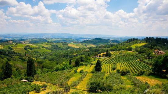 托斯卡納葡萄酒莊園遊覽