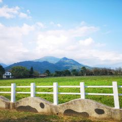 루이쑤이 목장 여행 사진