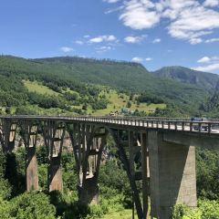 塔拉河大橋張用戶圖片