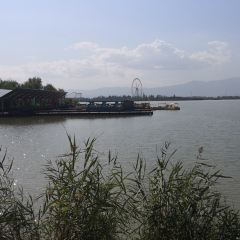 Yuehai Park User Photo