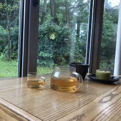 Osulloc Tea Museum User Photo