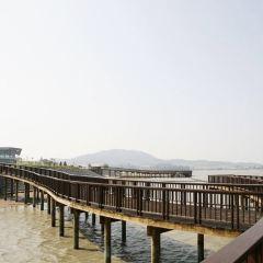 무안생태갯벌센터 여행 사진