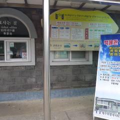 Jeju National Museum User Photo