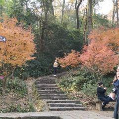 웨루산 여행 사진
