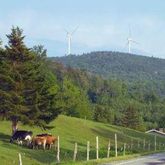 William F. Hayden Green Mountain Park User Photo