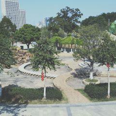 城北公園張用戶圖片