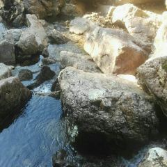 龍泉大峽谷用戶圖片