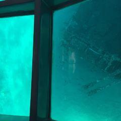亞喀巴灣用戶圖片
