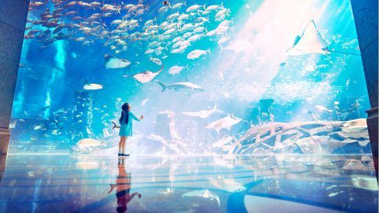 大使環礁湖