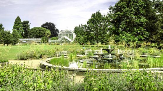 劍橋大學植物園